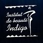 Institut Indigo